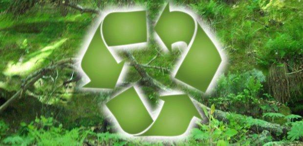 compra de productos ecológicos