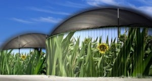 digestor de biogas