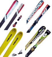 baston-esqui