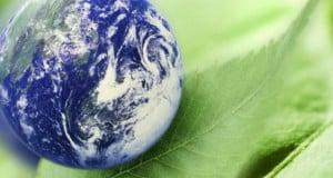 organizaciones para el cuidado del medio ambiente