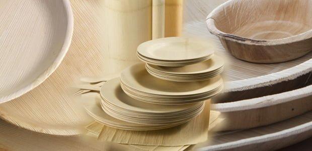 platos desechables biodegradables