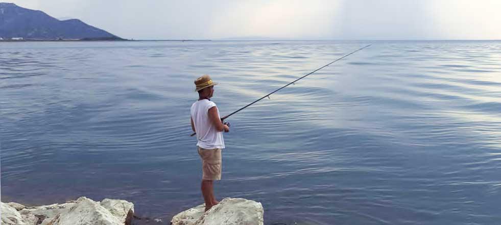 Cuánto cuesta una caña de pescar profesional