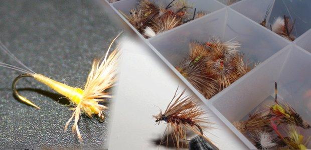 pesca con mosca seca