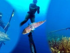 pesca submarina