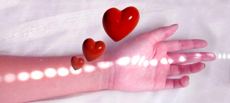 dia internacional del donante de sangre