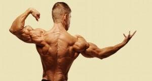 cómo reparar los músculos