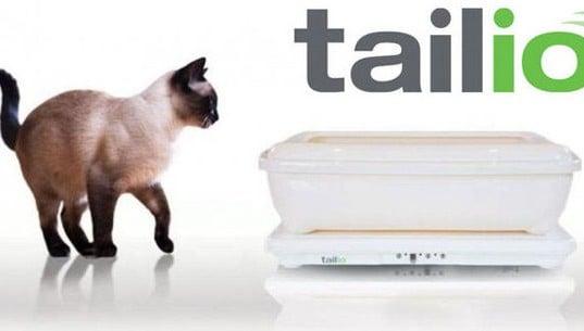 una balanza para la salud de tu gato