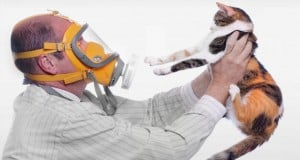 alergia a las mascotas