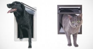 puertas para mascotas