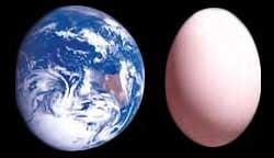 huevo de Colón