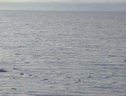 foto del desierto ártico