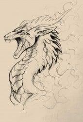 dibujo a lápiz de un dragón