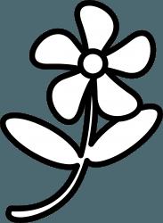 dibujo de flor fácil de dibujar