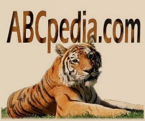 foto de un tigre de bengala