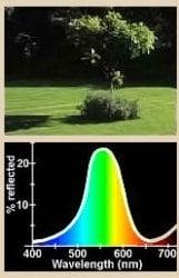 Iluminación natural, virtualmente imposible de igualar por métodos artificiales